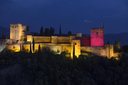 Día Internacional de la Niña - Alhambra de Granada